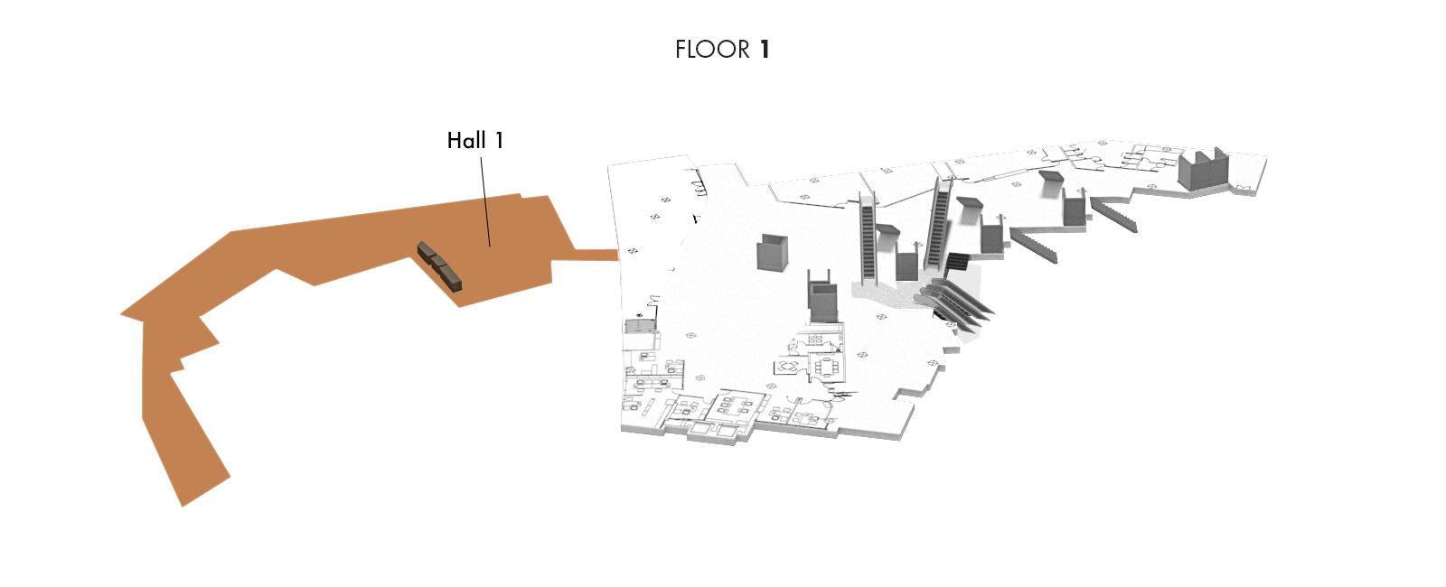 Hall 1, Floor 1   Palacio Euskalduna Jauregia