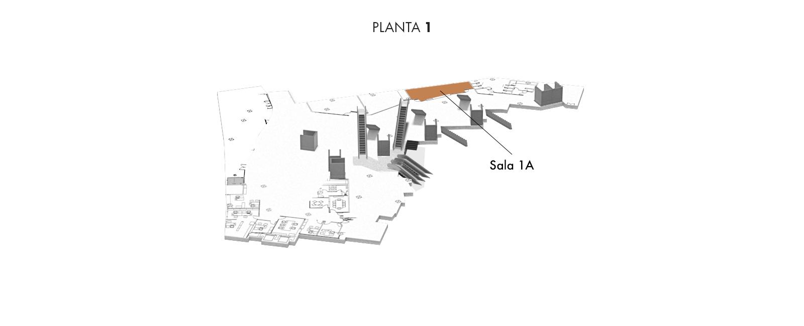 Sala 1A, Planta 1   Palacio Euskalduna Jauregia