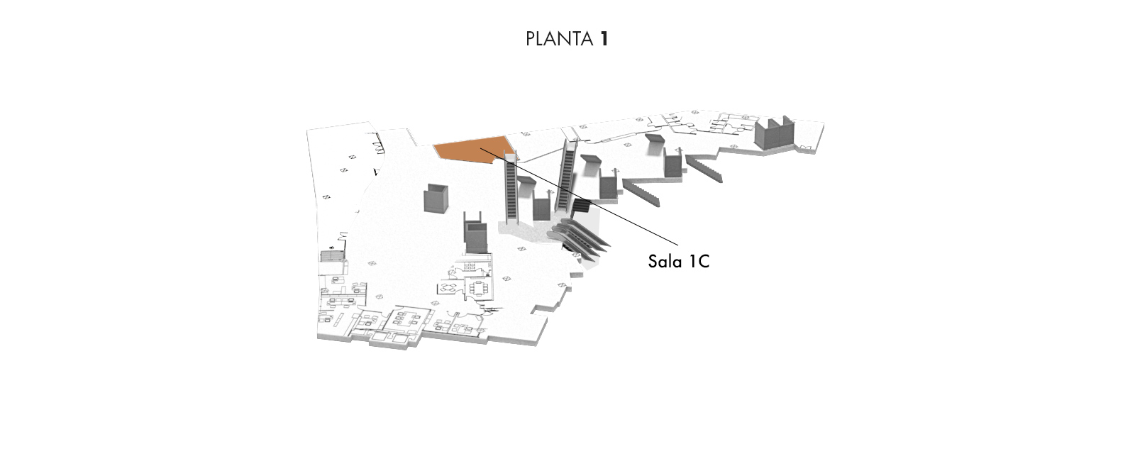 Sala 1C, Planta 1 | Palacio Euskalduna Jauregia
